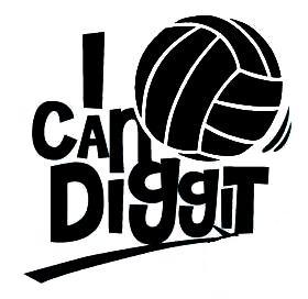 DiGGiT_logo_icandiggit_white_2.jpg
